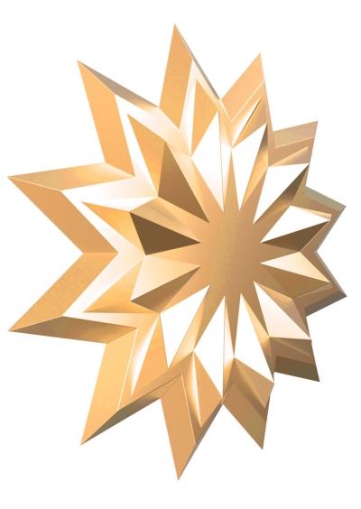 Звезда с логотипом